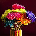 Multicolored Chrysanthemums In Paint Can by Jim Corwin