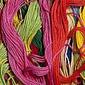 Multicolored Embroidery Thread Mixed Up  by Jim Corwin
