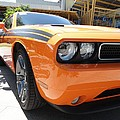 Muscle Car by FL collection