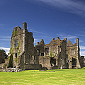 Neath Abbey by Premierlight Images