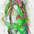 Nervous System by Joseph Ventura