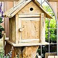 Nesting Box by Tom Gowanlock
