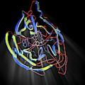 Neuraminidase by Hipersynteza