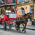 New Orleans - Carriage Ride by Steve Harrington
