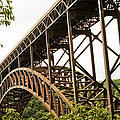 New River Gorge Bridge by Douglas MILLER