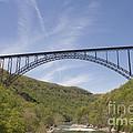 New River Gorge Bridge by Teresa Mucha
