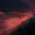 New River Sunset Fog by Douglas MILLER
