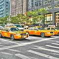 New York Cabs by Susan Leonard