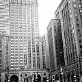 New York City by Alexander Mendoza