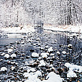 Nine Mile Creek by Joe Mamer