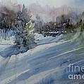 Northern Exposure by Sandra Strohschein