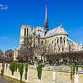 Notre Dame De Paris by Pati Photography