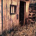 Old Barn Door by Jill Battaglia
