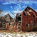 Old Dreams by Cheryl Cencich