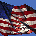 Old Glory by Carl Purcell