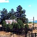 Old Homestead  by Bobbee Rickard