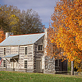Old Log House by Brian Jannsen