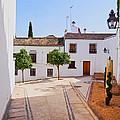 Old Town In Cordoba by Karol Kozlowski