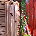 Old Wooden Door by Liane Wright