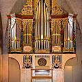 Oldest Organ by Jenny Setchell