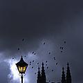 On A Cold Dark Night by Margie Hurwich