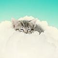 On Cloud Nine by Amy Tyler