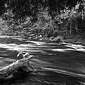 Going Down Stream by Jeffery L Bowers