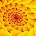 Yellow Pillow Vortex by Doug Morgan