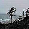 Oregon Coast by Brad Gravelle