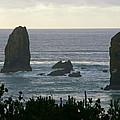 Oregon Coast  by Richard Headley