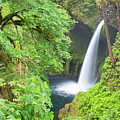Oregon, Columbia River Gorge National by Jamie and Judy Wild