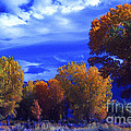 Owens Valley Fall Colors  by Paul W Faust -  Impressions of Light