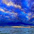 Paradise Is Blue by Tim Trombley
