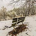 Park Bench In The Snow Covered Park Overlooking Lake by Alex Grichenko
