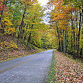 Parkway by Todd Hostetter