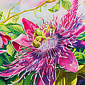 Passionflower Party by Janis Grau