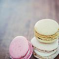 Pastel Macarons II by Mary  Smyth