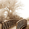 Pedestrian Bridge by Marilyn Hunt