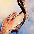Pelican by Nancy Hanrath