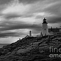 Pemaquid Point Lighthouse  by Patricia Betts