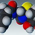 Penicillin V Molecular Model by Evan Oto