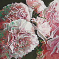 Peonies by Helen White