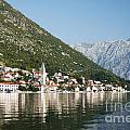 Perast In Kotor Bay Montenegro by Jacek Malipan