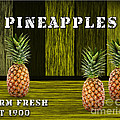Pineapple Farm by Marvin Blaine