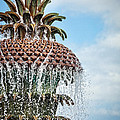 Pineapple Fountain by Leslie Banks