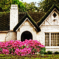 Pink Azaleas - Old Southern Charm By Sharon Cummings by Sharon Cummings
