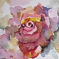 Pink Rose by Delilah  Smith