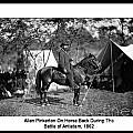 Pinkerton Man by David Call