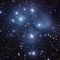 Pleiades M45 by Dale J Martin
