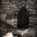 Poinsett Bridge Gothic Arch by Kelly Hazel